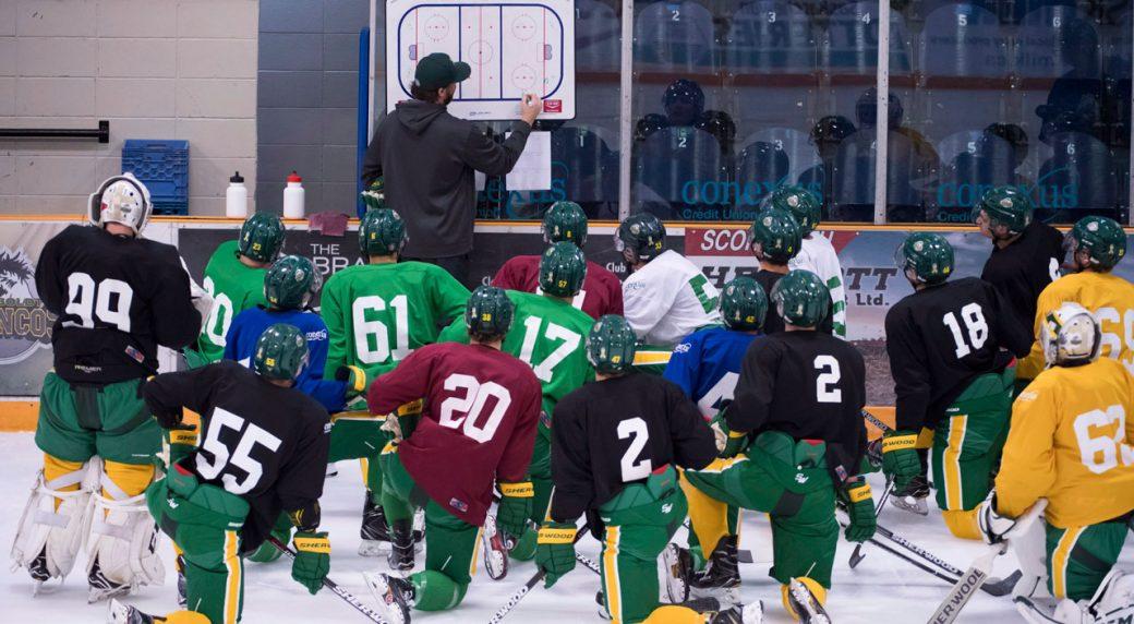 Adult hockey league regina safe